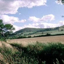 Battle of Homildon Hill